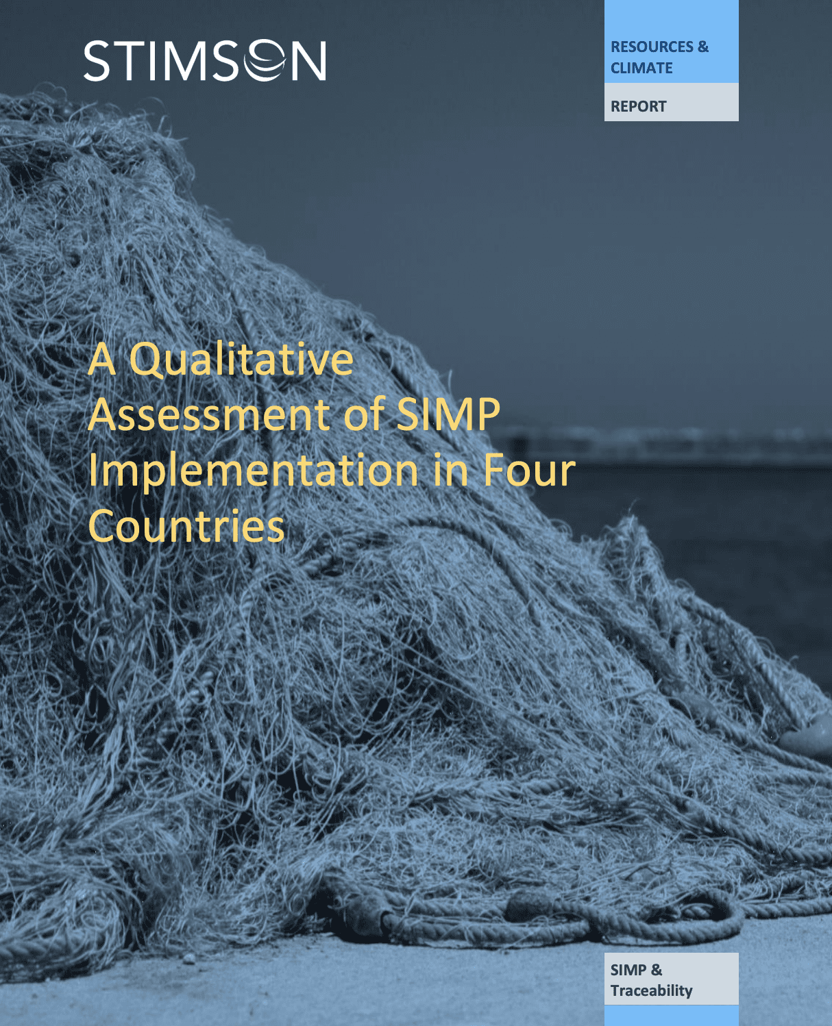 A Qualitative Assessment of SIMP Implementation in Four Countries