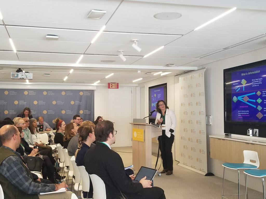 SALT Advisory Committee member Giuliana Torte presenting a slide