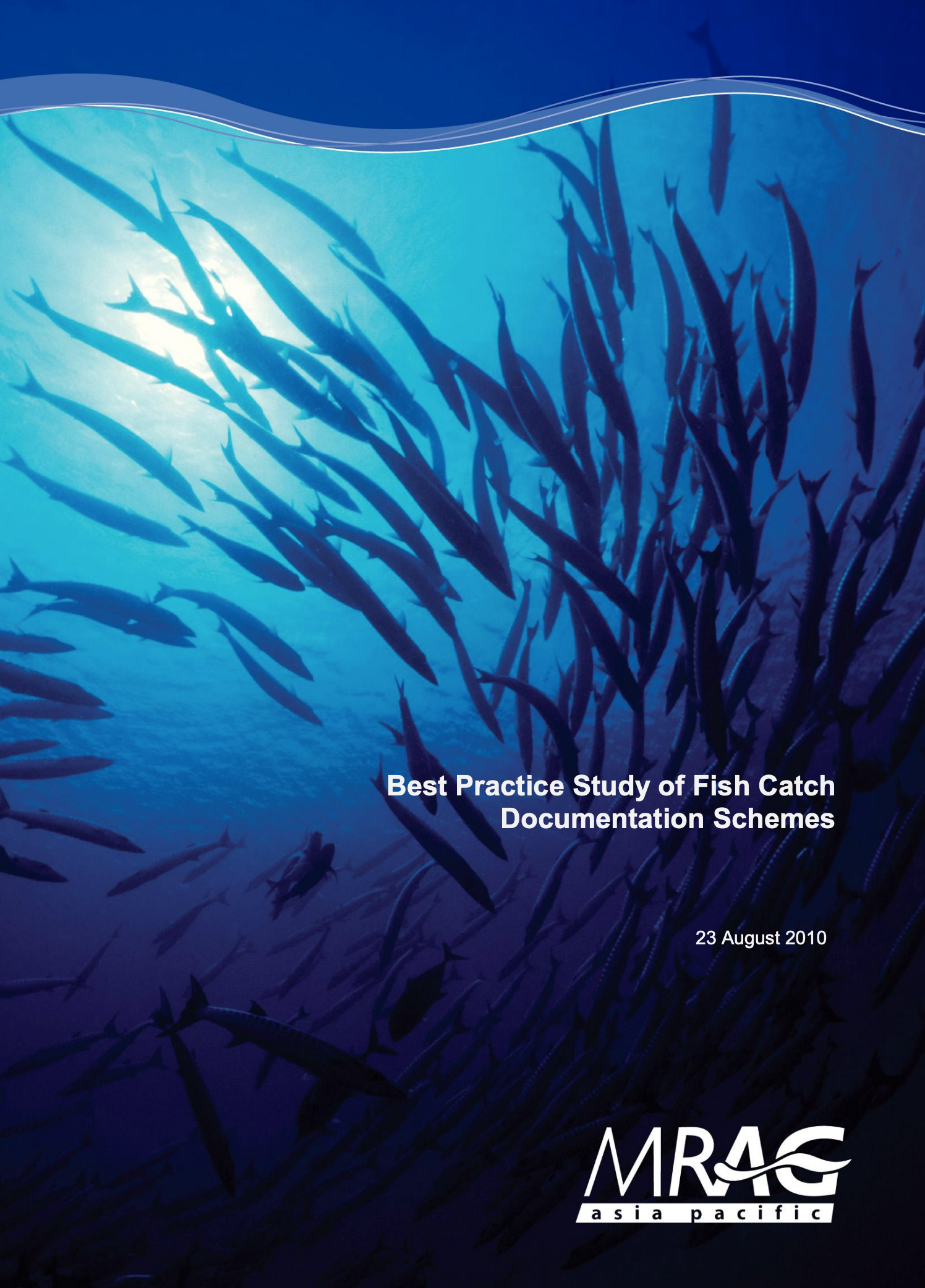 Best Practice Study of Fish Catch Documentation Schemes