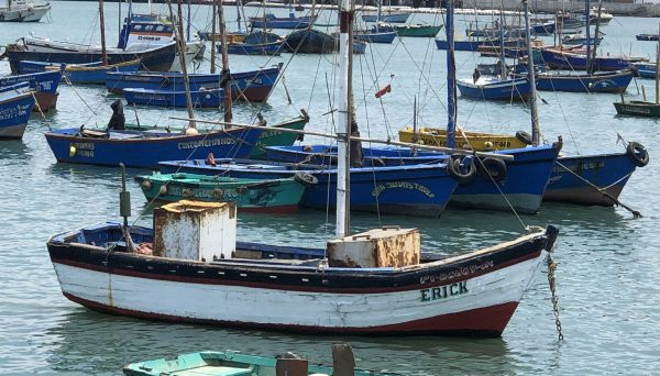 Boat flying Peru Flag