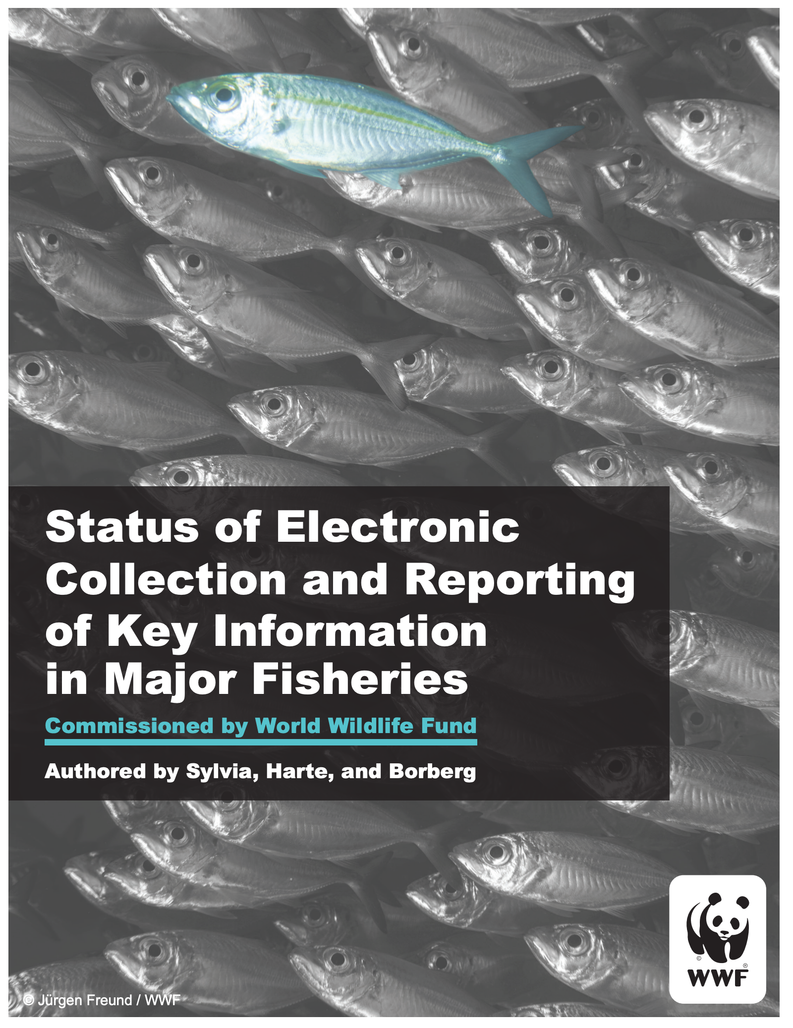 Status of Electronic Collection and Reporting of Key Information in Major Fisheries