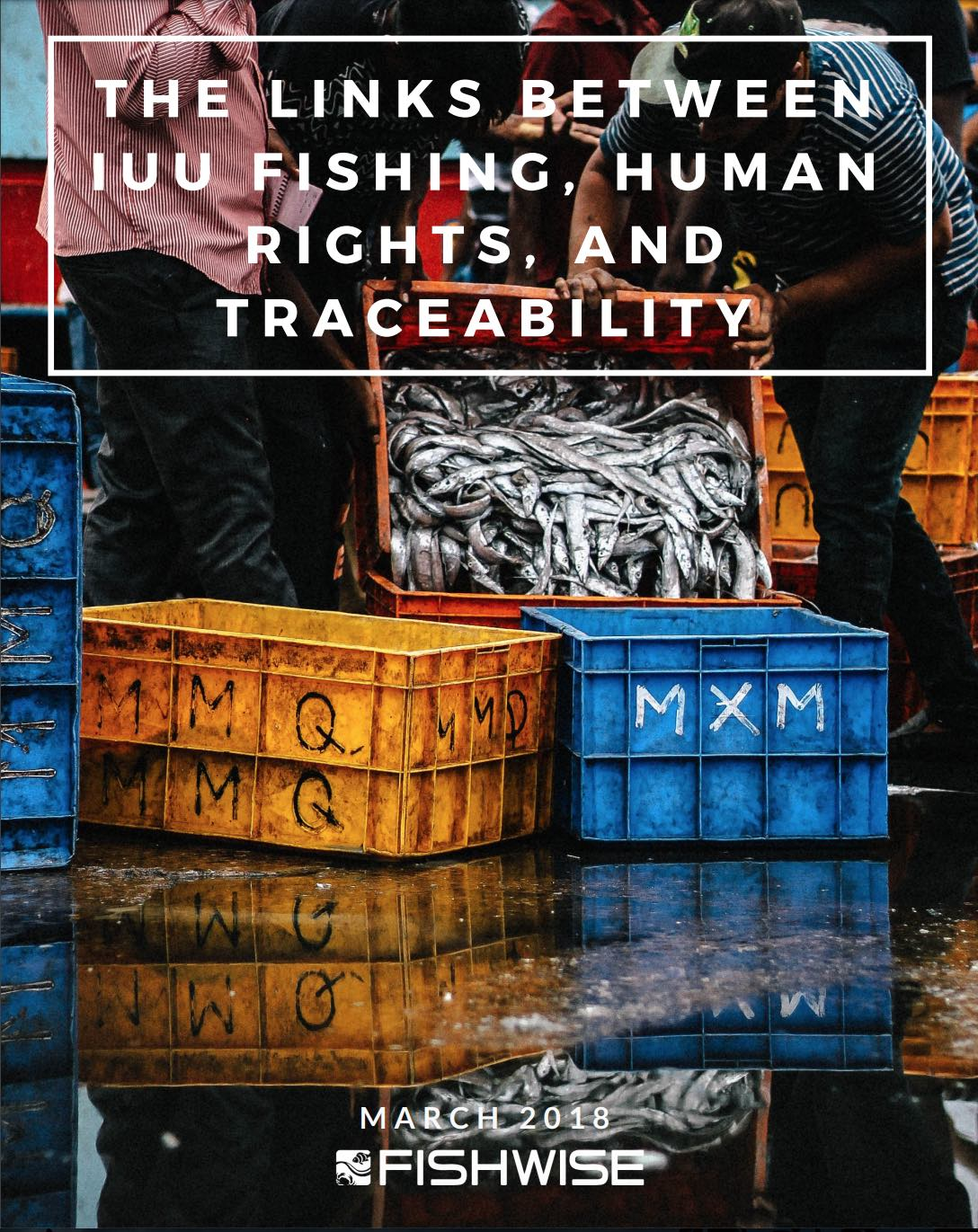 The Links Between IUU Fishing, Human Rights, and Traceability