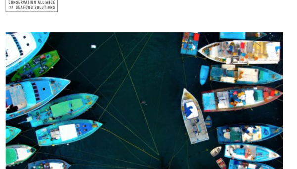image of boats from Conservation ALliance website