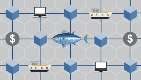 cartoon image of fish connected to boats and computers
