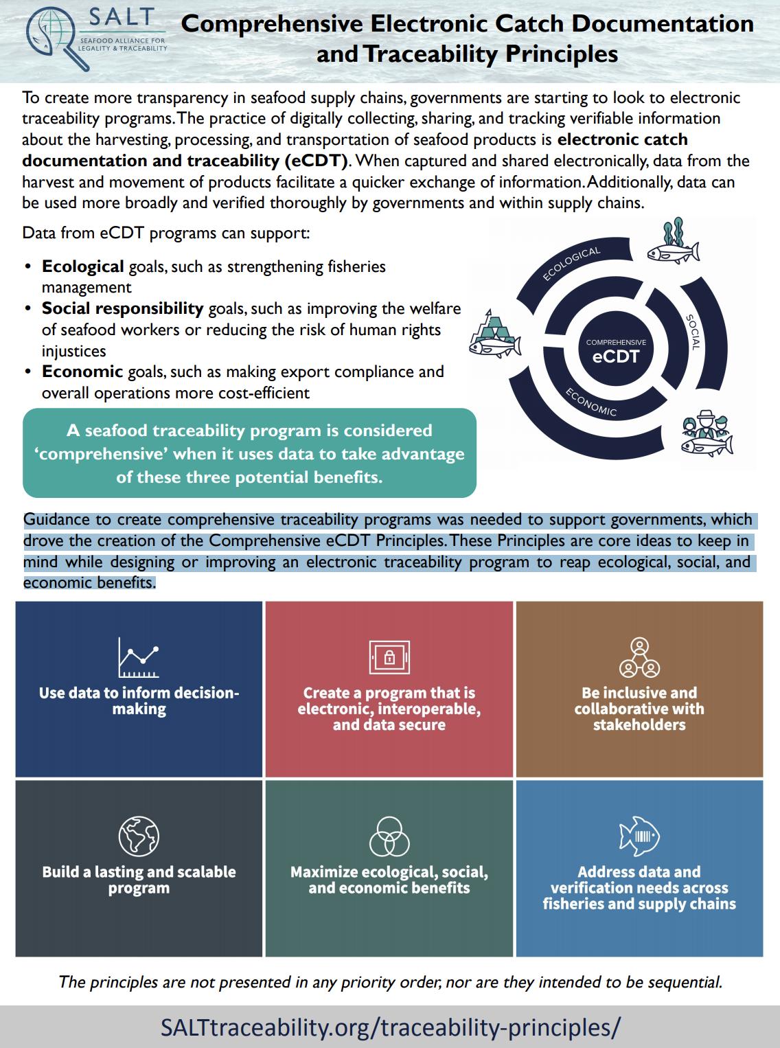Comprehensive eCDT Principles One-Pager
