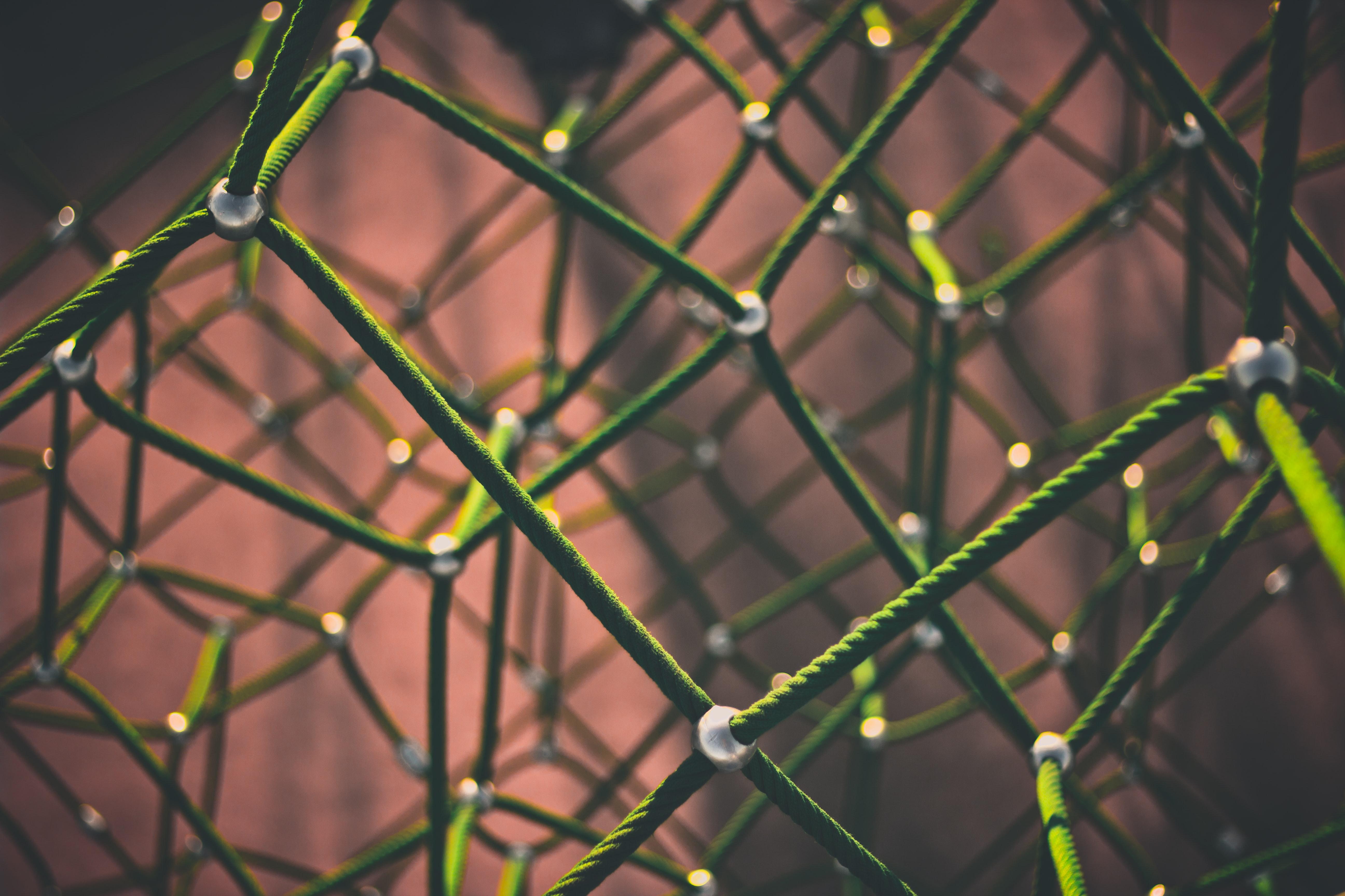network of mesh