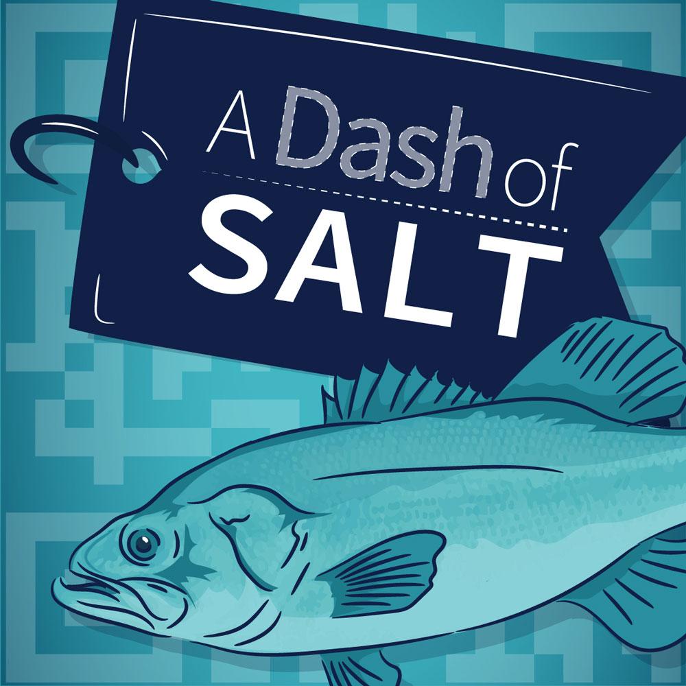 A dash of SALT logo